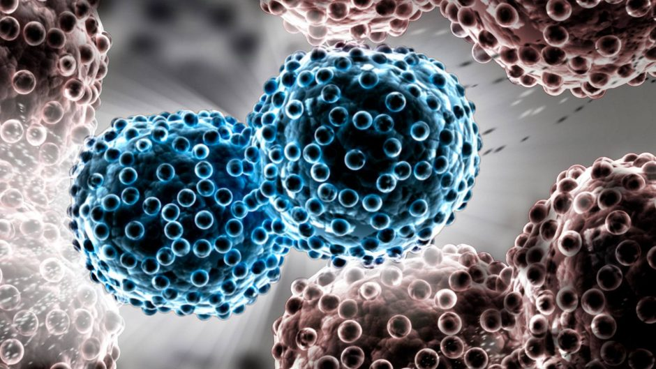 Lung Cancer Targeted Gene Panel [A Test in Focus]