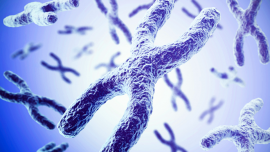 Mate-Pair Testing for Targeted Chromosome Rearrangement