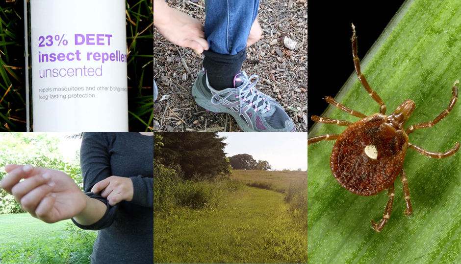 Four Tricks to Save Yourself from Ticks [Video]