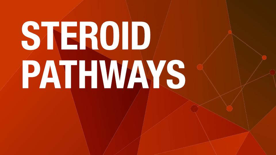 Steroid Pathways [Algorithm]
