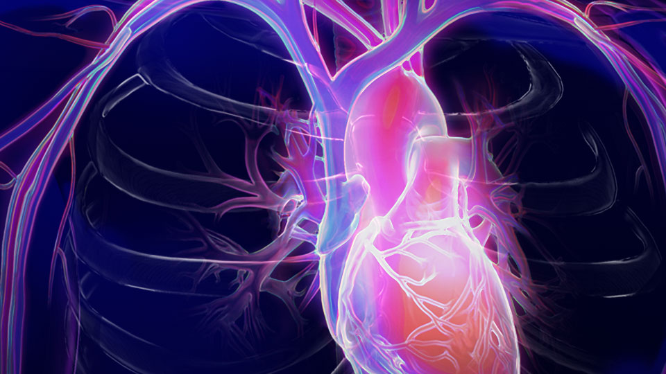 Utilizing ST2 in the Management of Heart Failure Patients