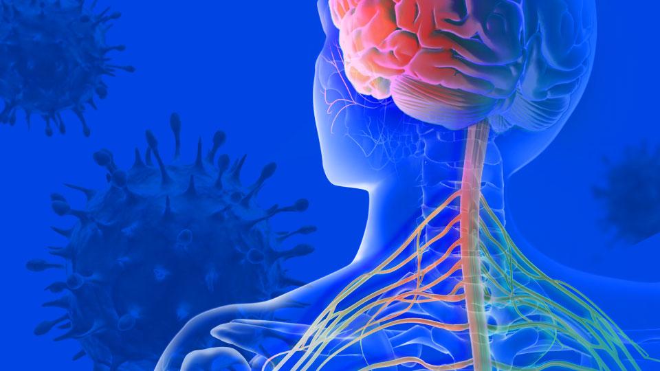 Mayo Clinic Laboratory and Pathology Research Roundup: June 13