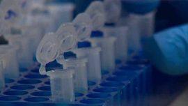 Mayo Clinic Laboratory and Pathology Research Roundup: Jan. 21