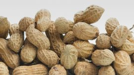Hypersensitivity Reactions and Peanut Component Testing