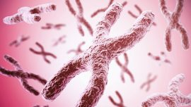 Mayo Clinic Discovery Advances Potential Individualized Treatment for Mesothelioma