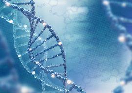 <i>RAS/RAF</i> Targeted Gene Panel [A Test in Focus]