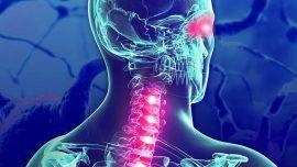 MOG Antibody-Associated Spinal Cord Inflammation Can Mimic Acute Flaccid Myelitis