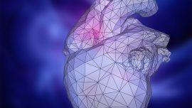 Postmortem Cardiovascular Genetic Testing [A Test in Focus]