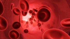 Mayo Medical Laboratories, National Decision Support Company Team up to Develop Careselect™ Blood, a Comprehensive Approach to Patient Blood Management