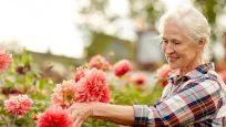 Diagnostic, Prognostic, and Predictive Lung Cancer Testing
