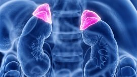 A Breakthrough in Distinguishing Benign Adrenal Tumors from Cancerous Ones